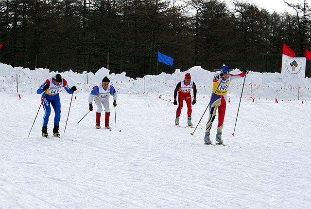 Стартуют опытные лыжники